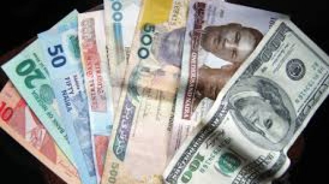 Naira rises to 215/$1 after dramatic fall