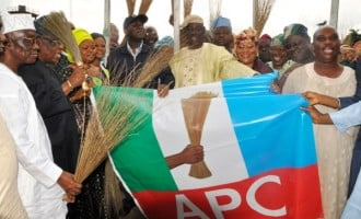 APC wins all seats in Kano LG, councillorship election