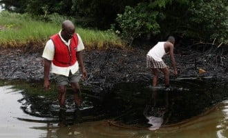 Shell offers £55m compensation for Bodo spills
