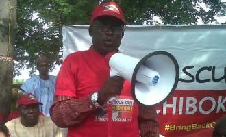 14 Chibok parents dead as rescue hopes fade