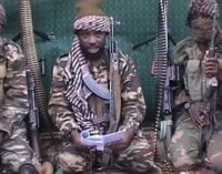 Report: ISWAP confirms Shekau's death, accuses him of corruption