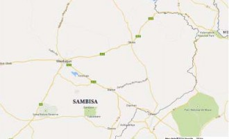 What do you know about Sambisa near Chibok?