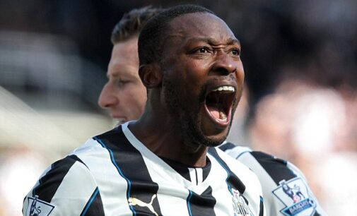 Pardew tips Ameobi for management role