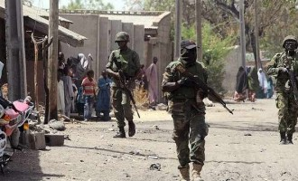 Nigerian troops kill 'over 50' terrorists