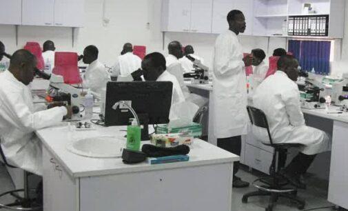 Nigerian doctors vote to end strike