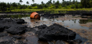 Ogoni clean-up: We've cleared 15 oil-polluted sites, says FG