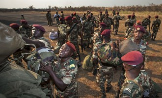Cameroonian troops 'kill' 39 B'Haram insurgents