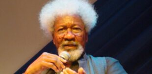 Soyinka on school abductions: We're very close to accepting an unacceptable culture