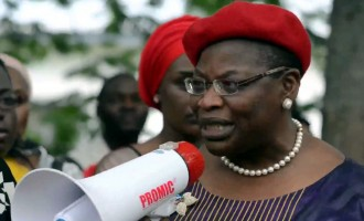 Ezekwesili: Independence celebration incomplete without Chibok girls