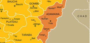 Police: Kidnapped widow, daughter rescued in Adamawa