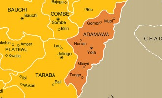 Residents flee Adamawa town as gunmen kill four policemen