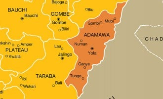 Explosion kills two children in Adamawa