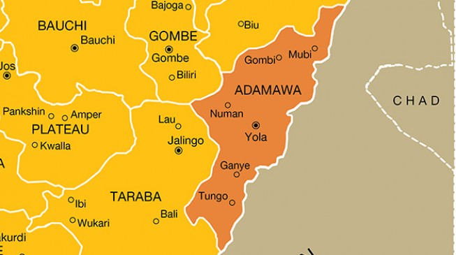 Adamawa communities call for help over killings