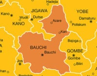 Bird flu: Bauchi bans movement of poultry products