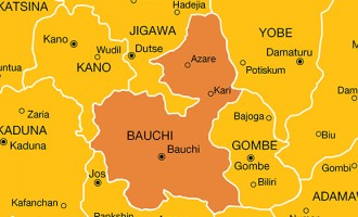 Police ban unauthorised public gatherings in Bauchi