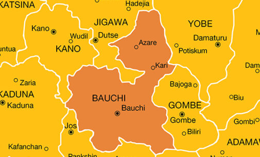 Reps reject motion to declare Bauchi oil producing state