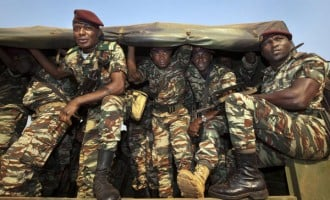 Nigerian, Cameroonian troops 'kill 162 insurgents'