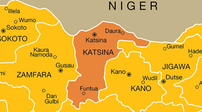 Nigerian police rescue 67 from