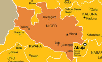 Police arrest 259 suspects over alleged banditry, kidnapping in Niger