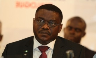 Chukwu: Nigeria will help Ebola-hit countries