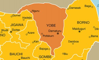 Female suicide bomber 'kills 10' in Yobe