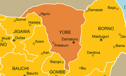 'Boko Haram spy' tracking movement of troops arrested in Yobe