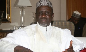 Shekarau threatens to sue IGP over document 'linking him to assassination'