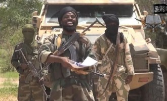 Shekau in new video: If army crushed us, how come you see me like this?