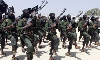 Somalia offers amnesty to al-Shabab militants