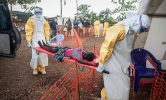 Ebola death toll in West Africa hits 10,000