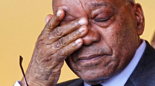 ANC 'may force' Zuma to resign