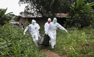 WHO confirms Ebola outbreak in DR Congo