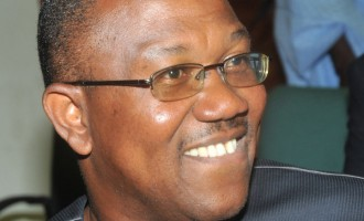 Ex-Governor Peter Obi defects to PDP