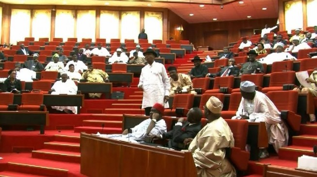 Nigerian Senate seeks powers to amend constitution without presidential assent