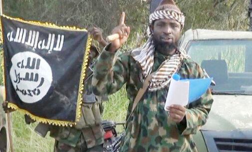 New 'Abubakar Shekau', new national heroes… 10 things we witnessed in Nigeria last week
