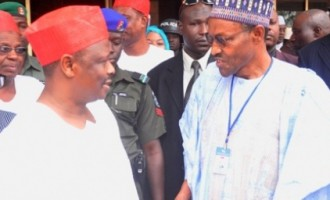 Pressure on Kwankwaso to withdraw for Buhari