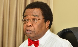 Bolaji Akinyemi on elections: Not even riotous 1965 polls made me this worried