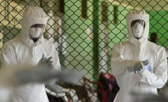 World records first Ebola-free week since 2014