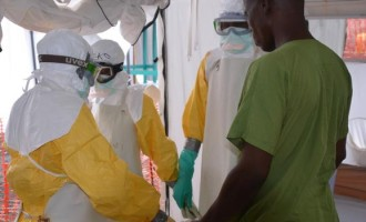 Ebola: FG sets up 10-man standby committee