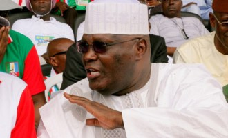 Atiku: Blame Amaechi for my absence at rallies