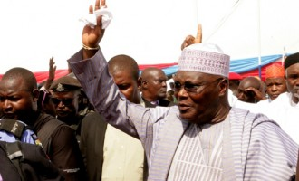 Adamawa PDP: No breathing space for Atiku until he returns to our party
