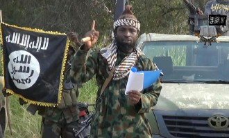 No ceasefire deal, Shekau says in new video