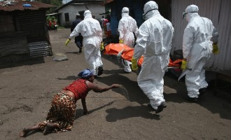 To fight Ebola, Lassa fever ECOWAS to adopt 'one health' approach