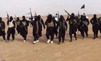 Islamic State: We burnt military barracks and killed 10 soldiers in Borno