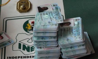 INEC sacks two staff for 'stealing voter cards'
