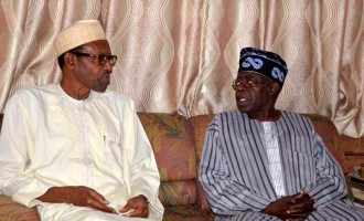 Tinubu: PDP trying to tear Buhari and me apart