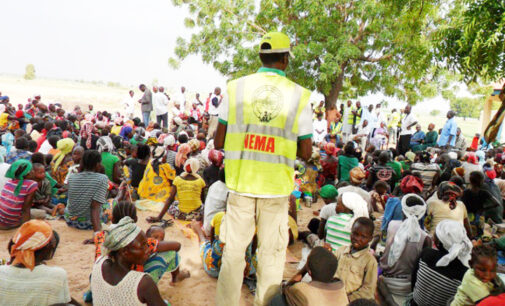 Adamawa IDP camps afflicted by measles outbreak
