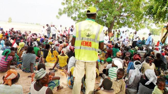 NEMA DG defends procurement of N3.1bn relief materials