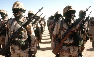 Niger soldiers 'may never return to Baga'