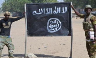 Boko Haram kills soldiers, policemen, four UN aid workers in Borno (updated)